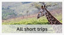 Short Trips