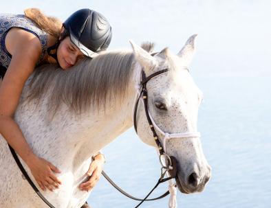 Räddningscenter för hästar med hästsafari i Moçambique